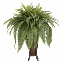 Boston Fern w/Stand Silk Plant