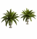 "20"" Boston Fern with Urn (Set of 2)"