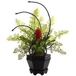 Bromeliad & Maidenhair Fern Arrangement
