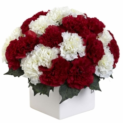 "11"" Carnation Arrangement in Vase - Red / White Color"