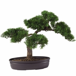 "Cedar Bonsai 16"" Silk Plant"