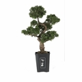 "Cedar Bonsai 36"" Silk Plant"