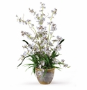 Dancing Lady Silk Orchid Arrangement