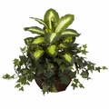 "20"" Silk Dieffenbachia & Ivy with Decorative Planter"