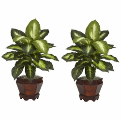 "20.5"" Dieffenbachia w/Wood Vase Silk Plant (Set of 2)"