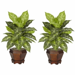 "20.5"" Dieffenbachia with Wood Vase Silk Plant (Set of 2)"