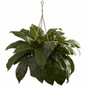 Double Giant Birdsnest Hanging Basket