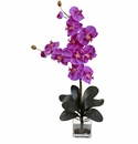 "30.75"" Double Giant Phalaenopsis in Vase"