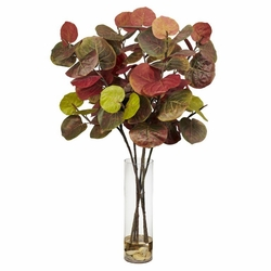 "49"" Giant Sea Grape Leaf with Cylinder Silk Plant"