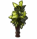 "50"" Silk Golden Dieffenbachia wth Decorative Bamboo Planter"
