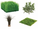 Grass, Moss &  Bushes