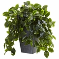 "29"" Hanging Pothos w/Slate Planter UV Resistant (Indoor/Outdoor)"