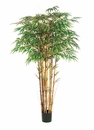 Individual - 6' Silk Bamboo Trees With Natural Trunks
