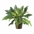 Jungle-like Artificial Marginatum Silk Plant w/Coiled Rope Wicker Basket