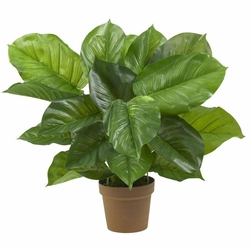 Large Leaf Philodendron Silk Plant (Real Touch)