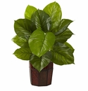 Large Leaf Philodendron w/Decorative Planter (Real Touch)