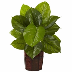 "28"" Large Leaf Philodendron with Decorative Planter (Real Touch)"