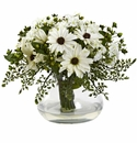 Large Mixed Daisy Arrangement