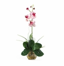 Mini Phalaenopsis Liquid Illusion Silk Orchid Arrangement