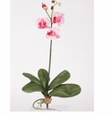 Mini Phalaenopsis Silk Orchid Flower With Leaves, 6 Stems