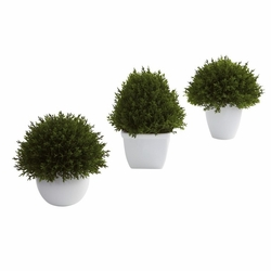 "5.5"" Artificial Mixed Cedar Topiary Collection (Set of 3)"