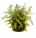 "13"" Mixed Fern with Twig and Moss Basket"