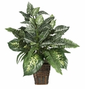 "26"" Mixed Greens Zebra with Wicker Silk Plant"