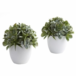 "8"" Mixed Artificial Succulent with White Planter (Set of 2)"