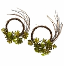 Mixed Succulent Wreath (Set of 2)