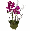 "21"" Silk Orchid & Artificial Succulent Arrangement"