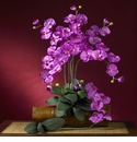 "31"" Phalaenopsis Silk Orchid Flower w/Leaves (Set of 6 Stems - Non Potted) - Orchid Color"