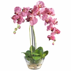 "18"" Phalaenopsis w/Glass Vase Silk Flower Arrangement"
