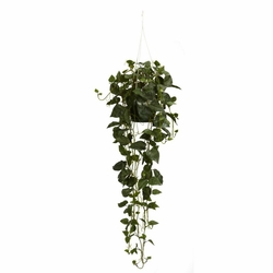 "44"" Philodendron Hanging Basket Silk Plant"