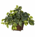 "17"" Pothos with Coiled Rope Planter Table Plant"