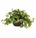 "15"" Pothos with Decorative Vase Silk Plant"