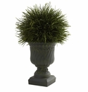 Potted Grass w/Decorative Urn (Indoor/Outdoor)