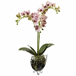 Raspberry Orchid Elegance Arrangement