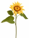 "Set of 12 - 25"" Artificial Sunflower Stems"