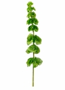 "Set of 12 - 29"" Silk Bells of Ireland Stems (Shown in Green)"