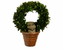 "Set of 2 - 10"" Preserved Boxwood Wreath Topiaries"