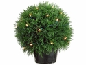 "Set of 2 -13"" Cedar Single Ball Topiary x 490 with 35 Clear Lights in Plastic Pot Green"