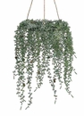 "Set of 2 - 14"" Glittered Japanese Pine and Pine Cone Hanging Artificial Wreath"