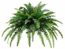 30 inch Large Boston Silk Fern Bush with  88 Fronds Non Potted - Set of 2