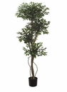 Set of 2 - 5' Multi Head Silk Ficus Trees
