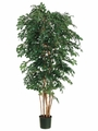 Set of 2 - 6' Artificial Sakaki Trees Real Wood Trunks