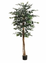 Set of 2 - 6' Silk Ficus Trees