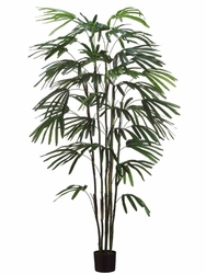 Set of 2 - 6' Silk Raphis Palms
