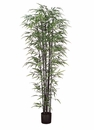 Set of 2 - 7' Natural Black Silk Bamboo Trees