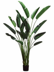 Set of 2 - 8' Artificial Bird of Paradise Plants