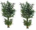 Set of 2 - 8' Artificial Fishtail Palm Trees